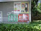 [Photos]   Photos de mes voyages à Tôkyô. Th_77457_PIC_0029_122_585lo